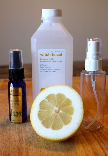 Natural Homemade Toner