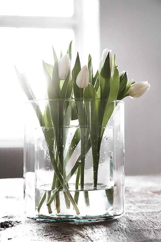 Simple Vases
