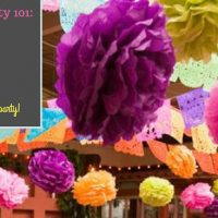 Engagement Part 101: The Mexican Fiesta Party